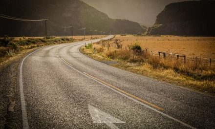 Tips For Driving in New Zealand's South