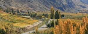 Wanaka to Queenstown via Cromwell